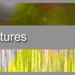 Textures #1