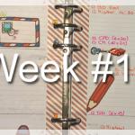 Week #17
